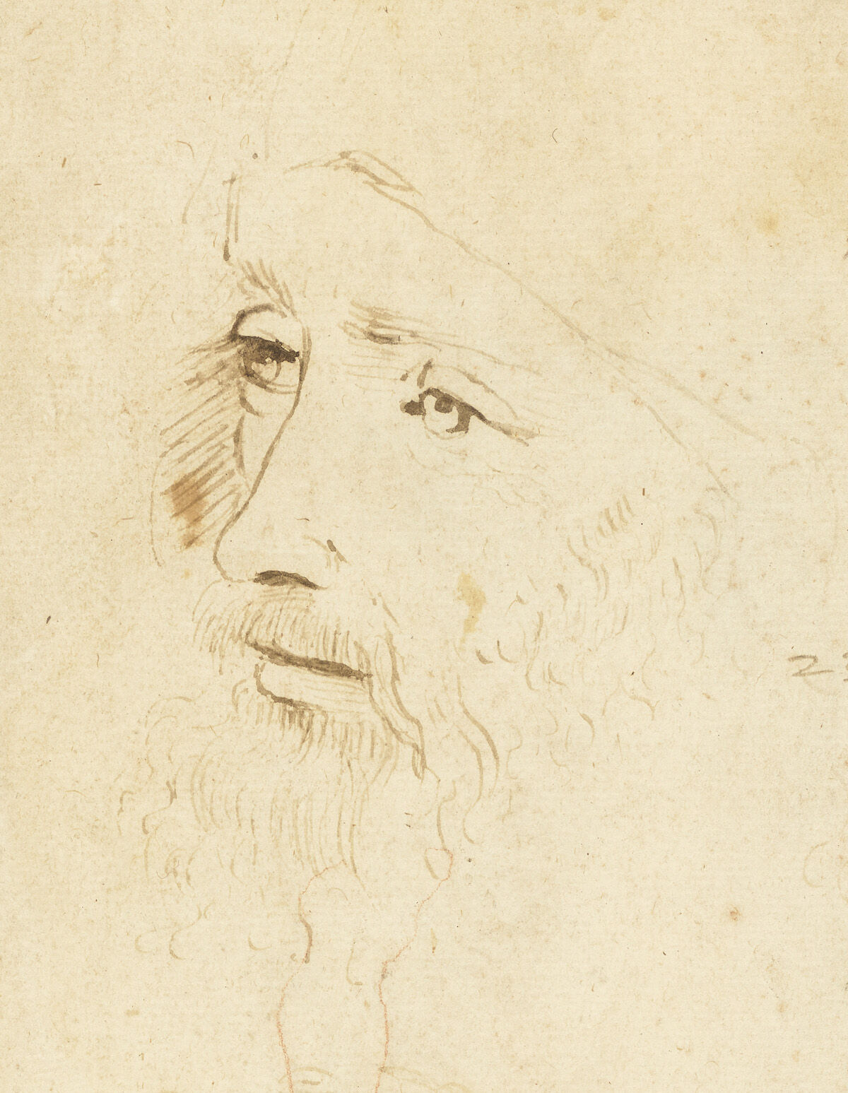 A sketch of Leonardo da Vinci, ca. 1517–18, by an assistant of Leonardo. Royal Collection Trust / © Her Majesty Queen Elizabeth II 2019.
