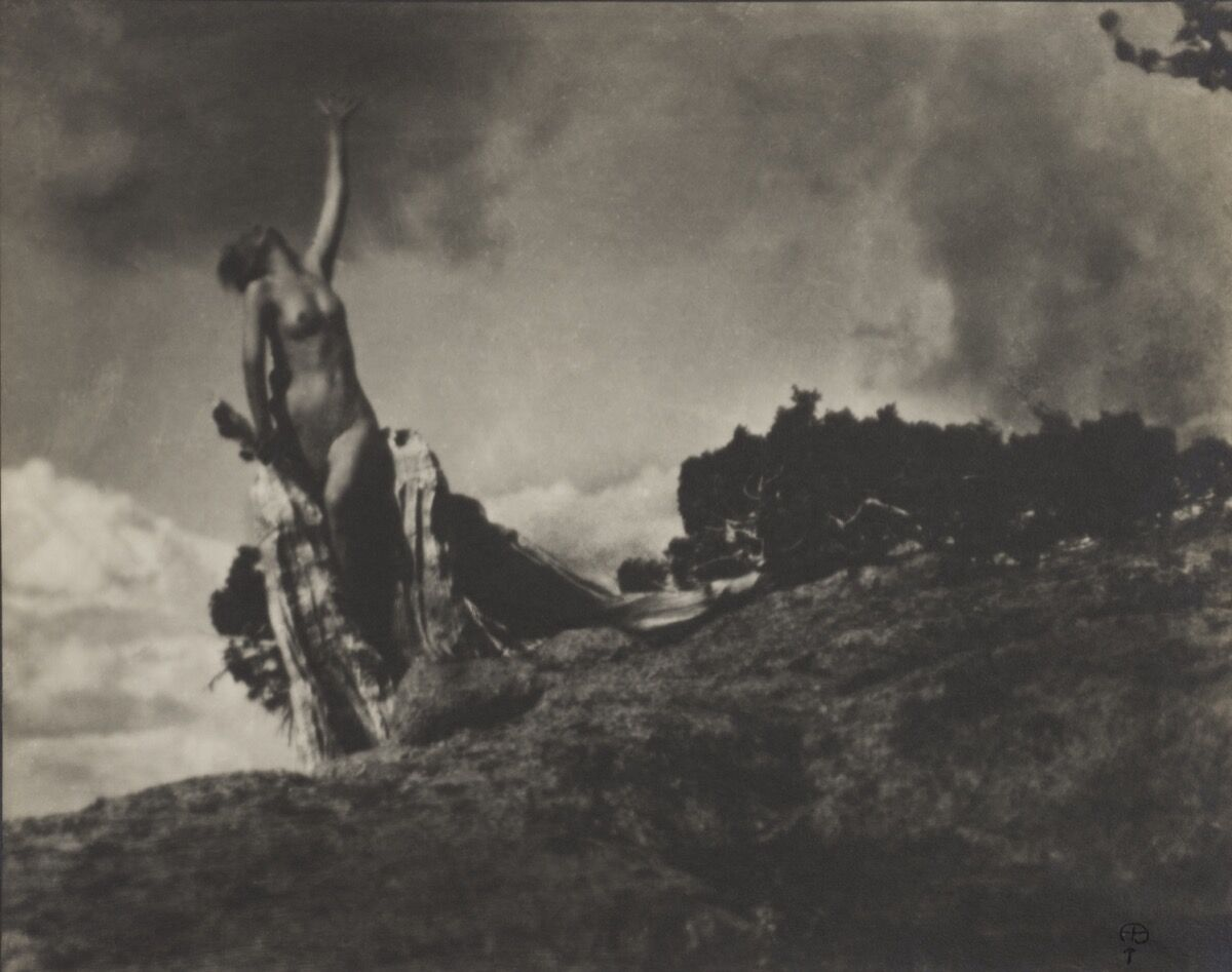 Anne Brigman, Soul of the Blasted Pine, 1906. Courtesy of the Wilson Centre for Photography.