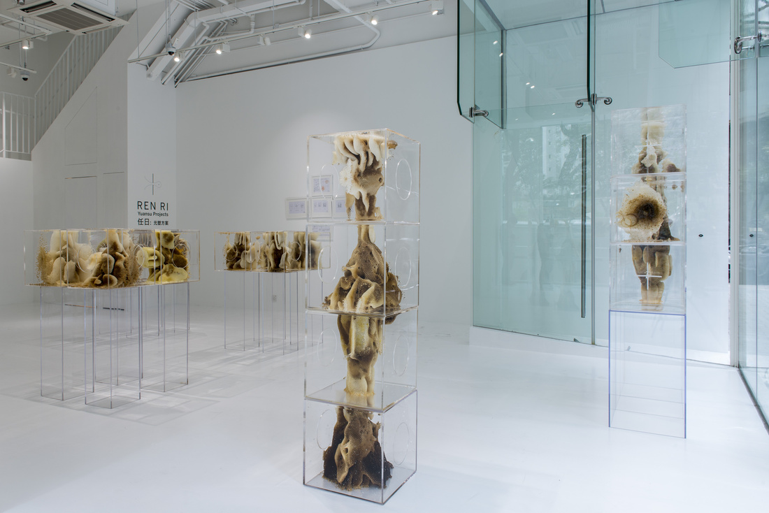"""Installation shot of""""Ren Ri: Yuansu Projects""""atPearl Lam Galleries SOHO. Courtesy Pearl Lam Galleries and the artist."""