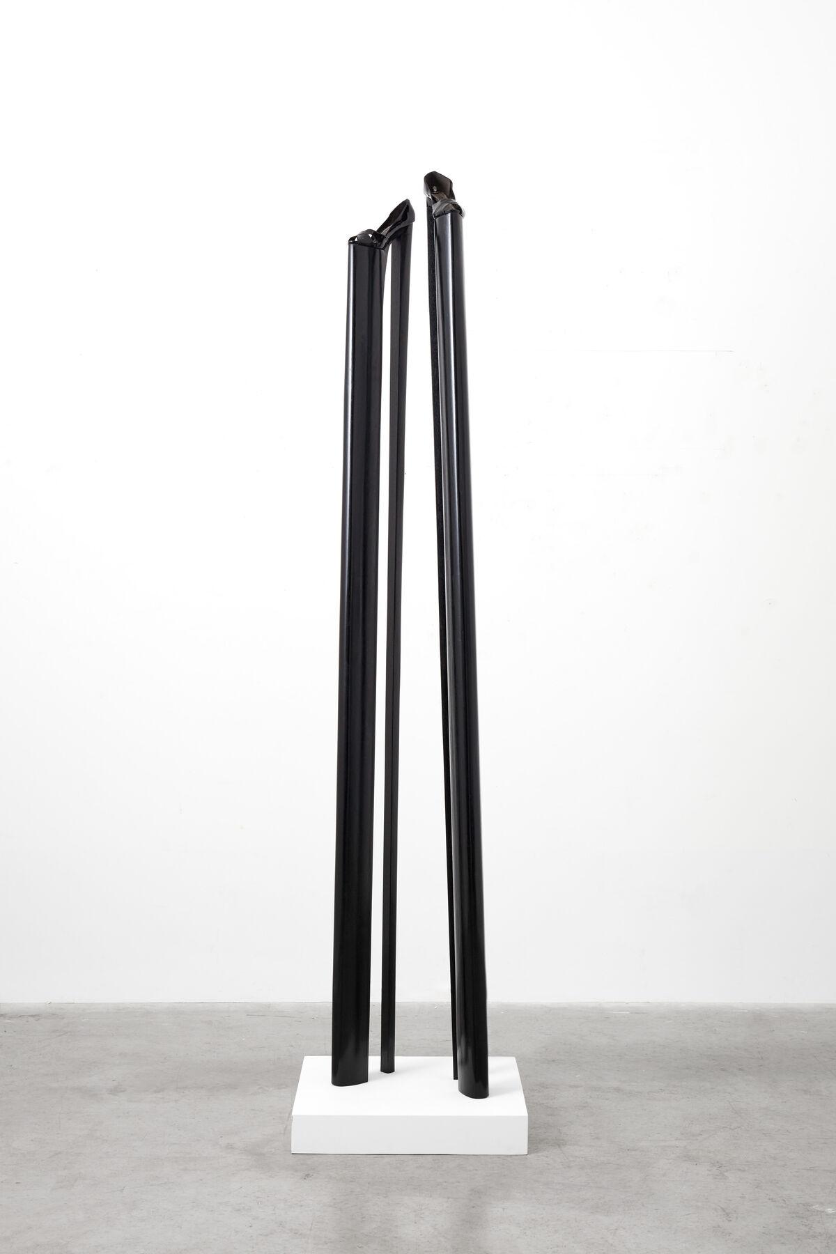 Yoan Capote, Top Feminist, 2008–09. © Yoan Capote. Courtesy of Ben Brown Fine Arts.
