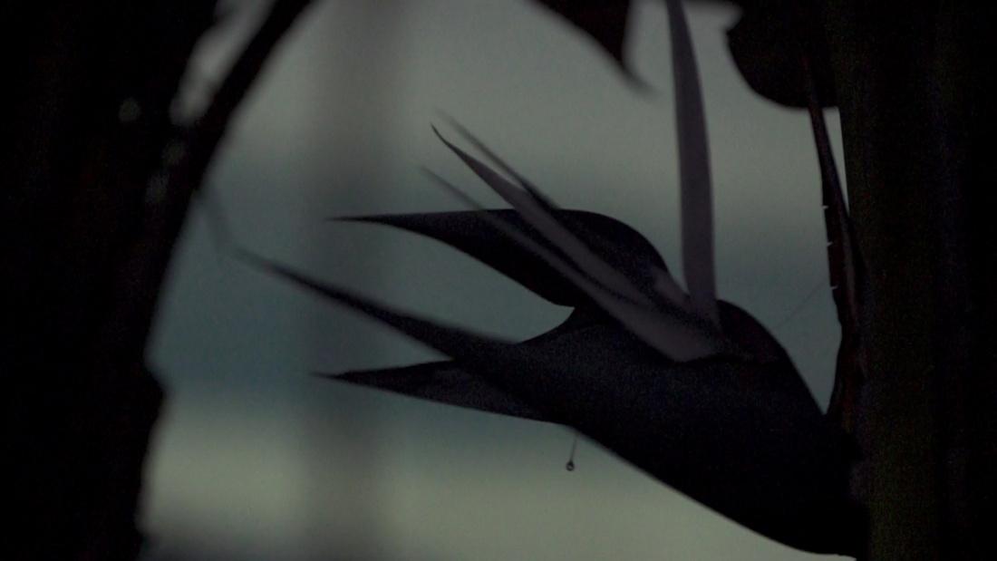 Cyprien Gaillard,Where Nature Runs Riot, 2015 (film still).Copyright Cyprien Gaillard.Courtesy Sprüth Magers.