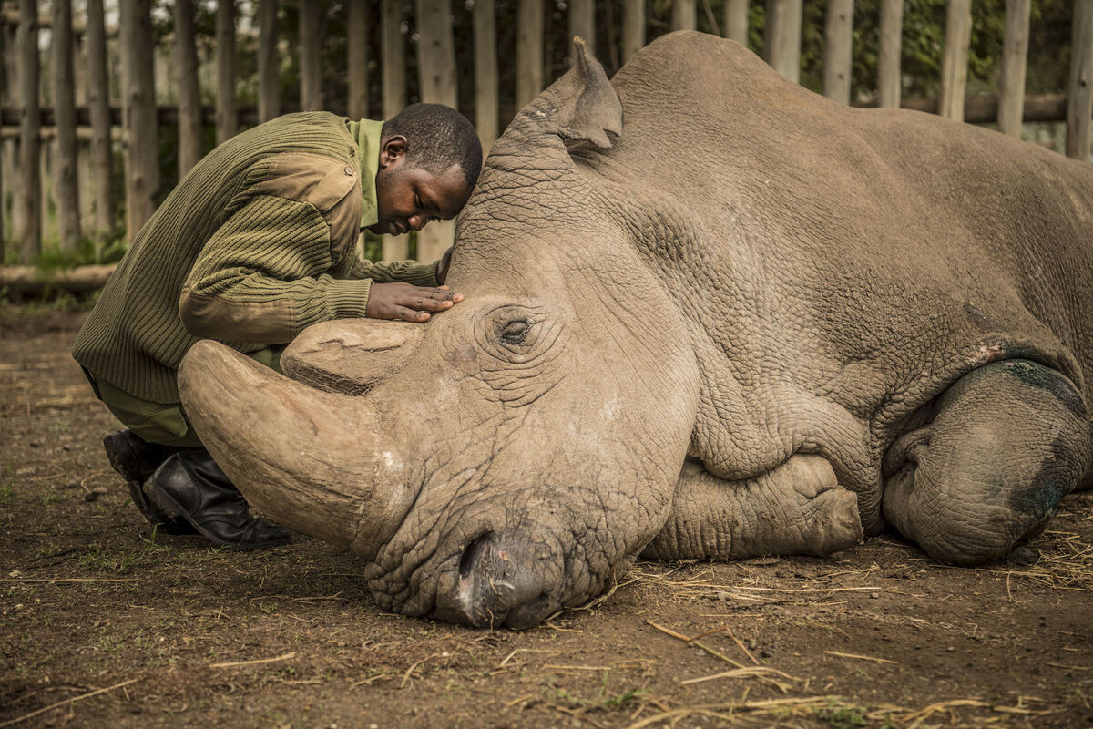 Photo by Ami Vitale/Nat Geo Image Collection.