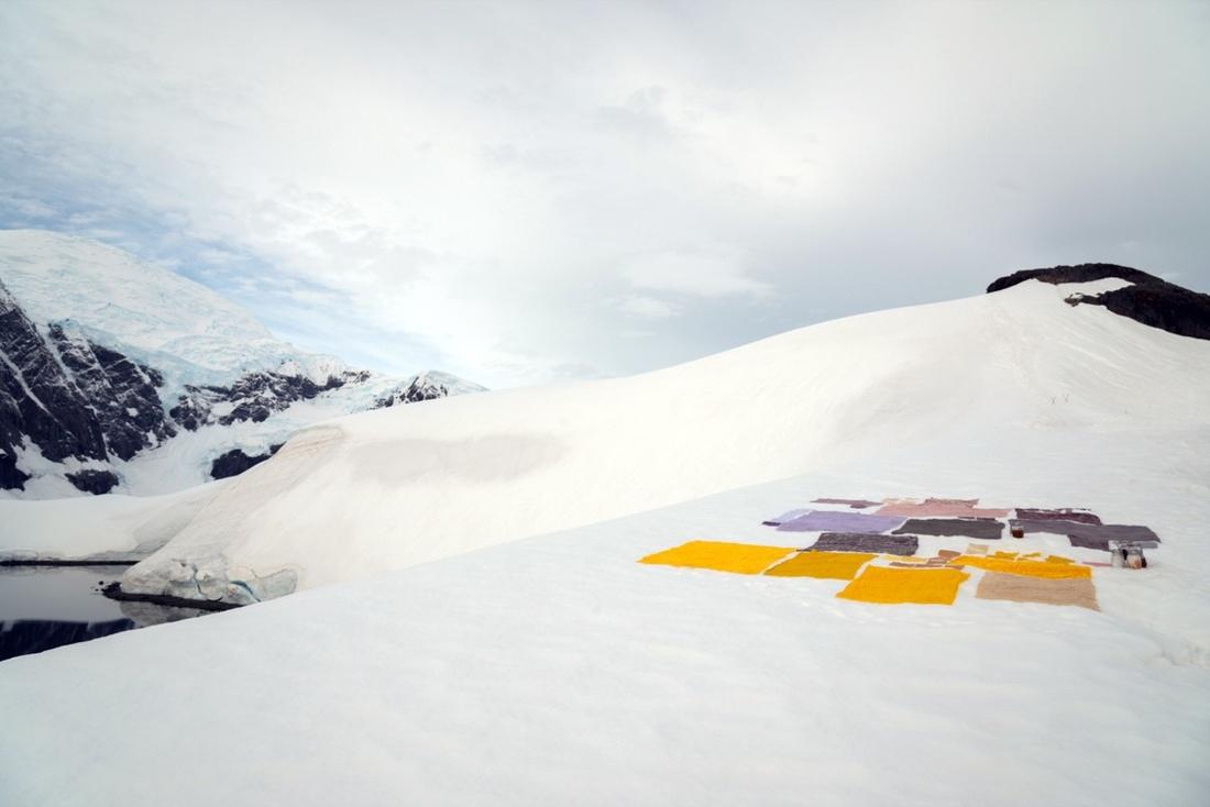 Courtesy of Antarctic Biennale.