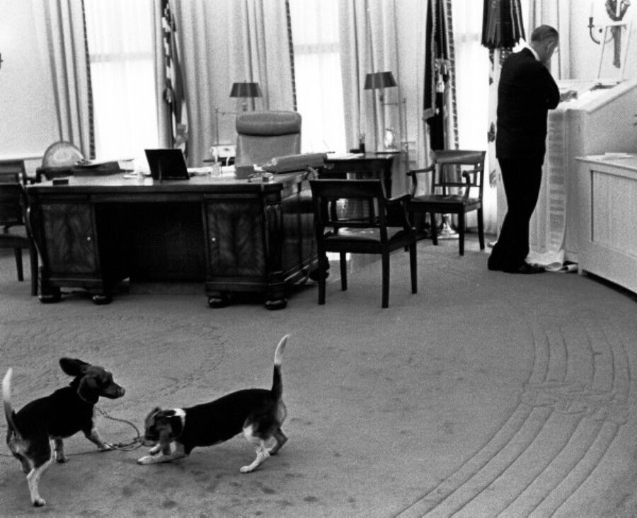 President Lyndon B. Johnson and his beagles, Him and Her, in the Oval Office. Photo by Yoichi Okamoto. Courtesy of the Lyndon B. Johnson Presidential Library and Museum/NARA and the White House Historical Association.