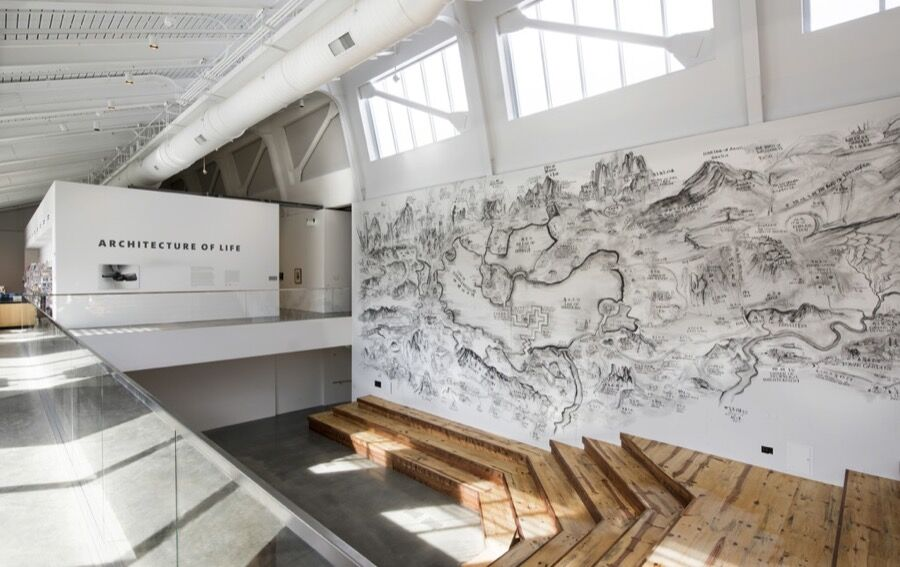 "Installation view of ""Architecture of Life"" at UC Berkeley Art Museum and Pacific Film Archive, Berkeley (2016). Courtesy of the museum."