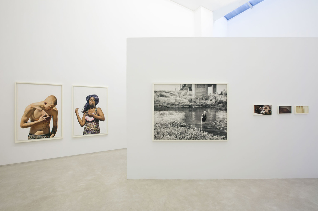 """Installation view of """"Katy Grannan: Hundreds of Sparrows"""" at Salon 94, New York. Courtesy of Salon 94 and the artist"""