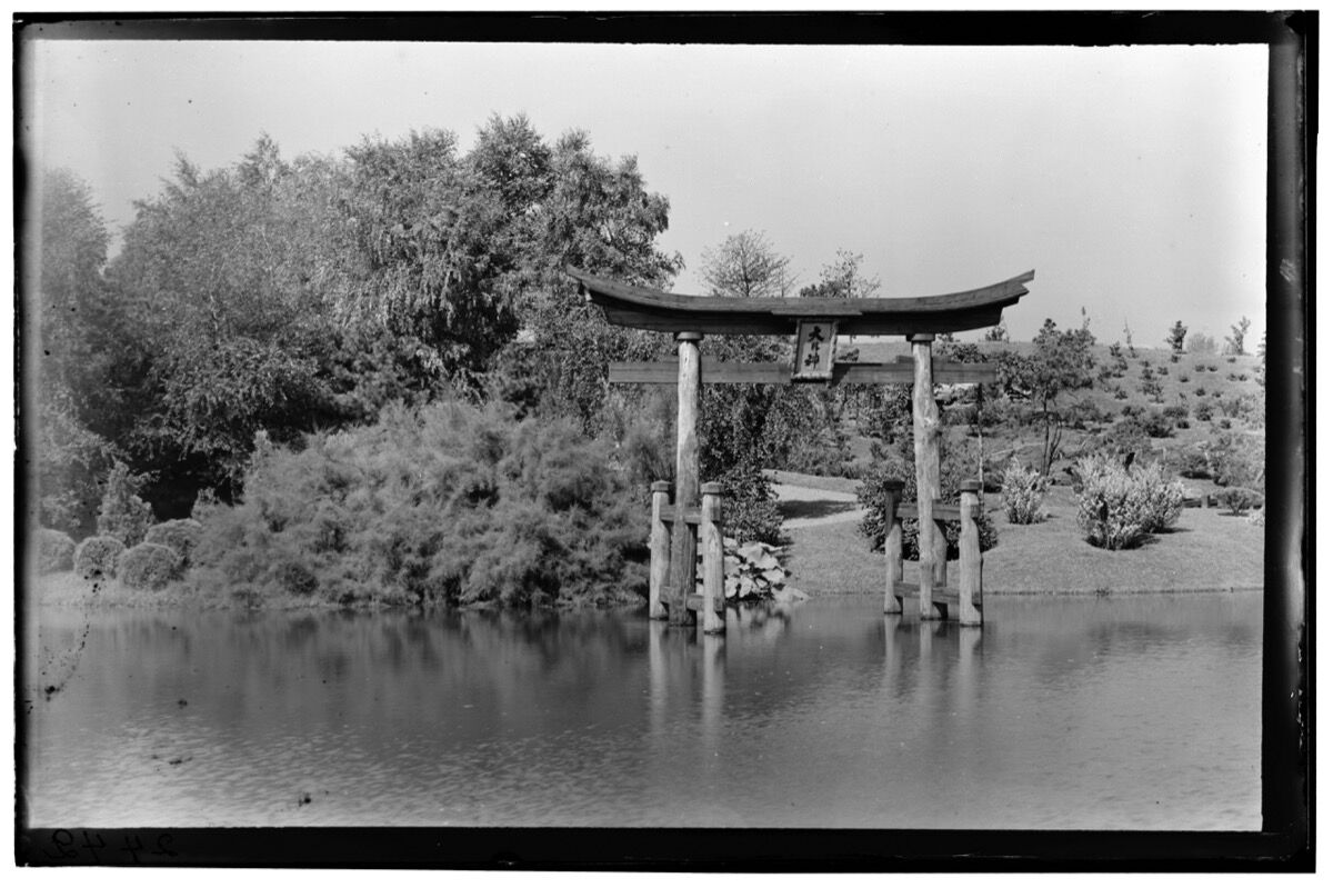 Japanese Hill-and-Pond Garden. Photo by Louis Buhle. C. 1916. © Brooklyn Botanic GardenCourtesy of Brooklyn Botanic Garden.