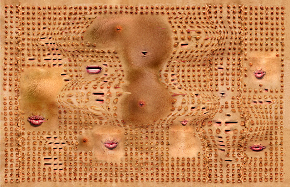 Tishan Hsu, Interface with Lips, 2002. Courtesy of Empty Gallery.