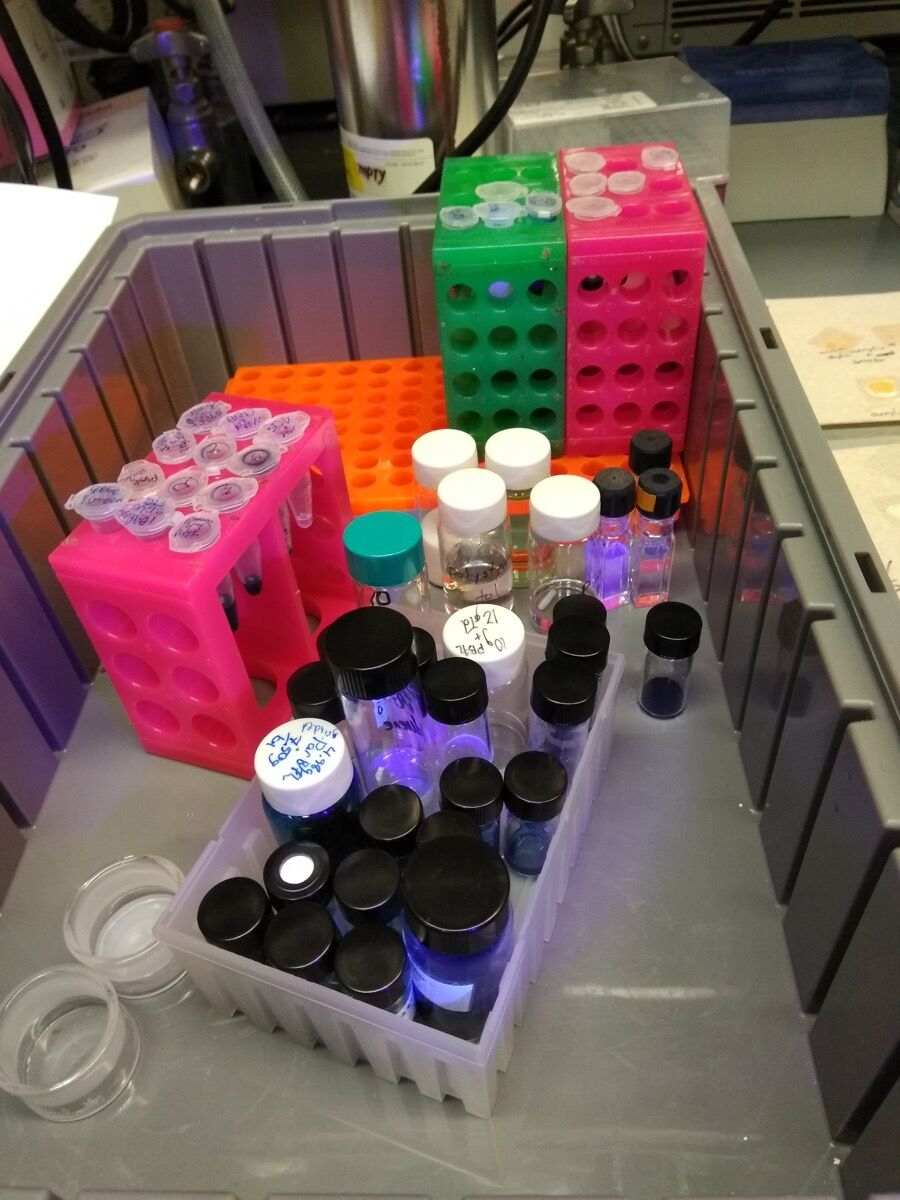 Samples of trials. Photo by Maria Chatzidakis. Courtesy of Maria Chatzidakis.