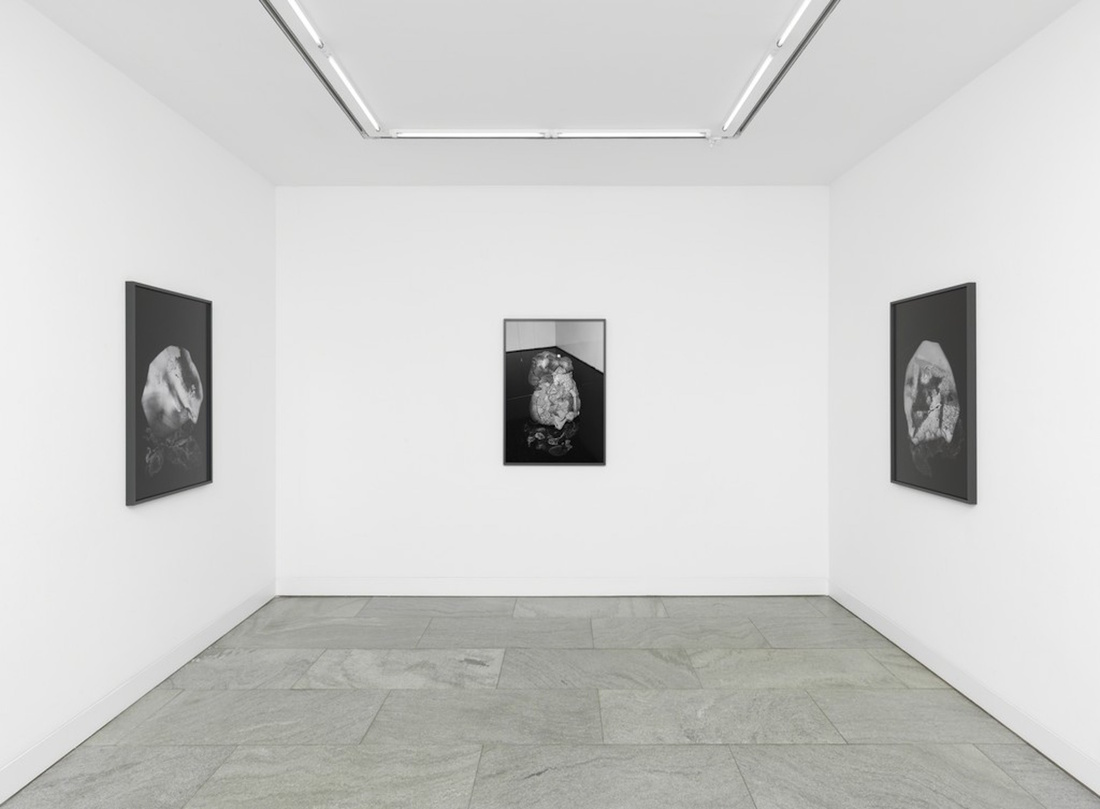 """Installation view of""""DRAWINGS FROM THE HAND,"""" courtesy ofDITTRICH & SCHLECHTRIEM."""