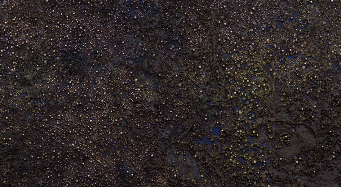 Night Sky (detail) (2016) by Govinda Sah 'Azad'