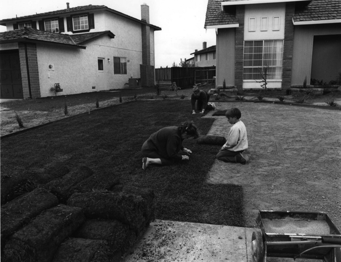 Bill Owens, I bought the lawn in six foot rolls. It's easy to handle. I prepare the ground and my wife and son helped roll out the grass. in one day you have a front yard. 1972. Courtesy of Robert Koch Gallery.