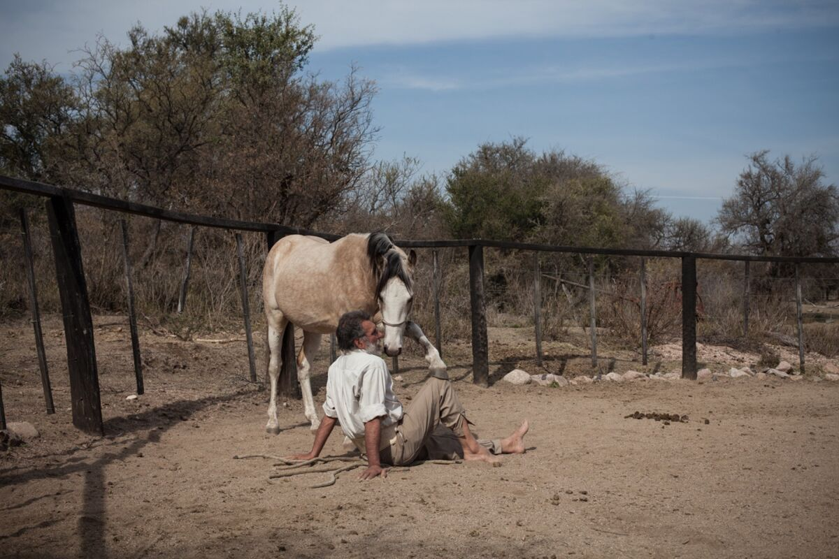 Horse whisperer Oscar Scarpati in the farmyard with a wild foal in Villa de Merlo, San Luis, Argentina, on July 27, 2017.  Photo by Erica Canepa. Courtesy of the artist.