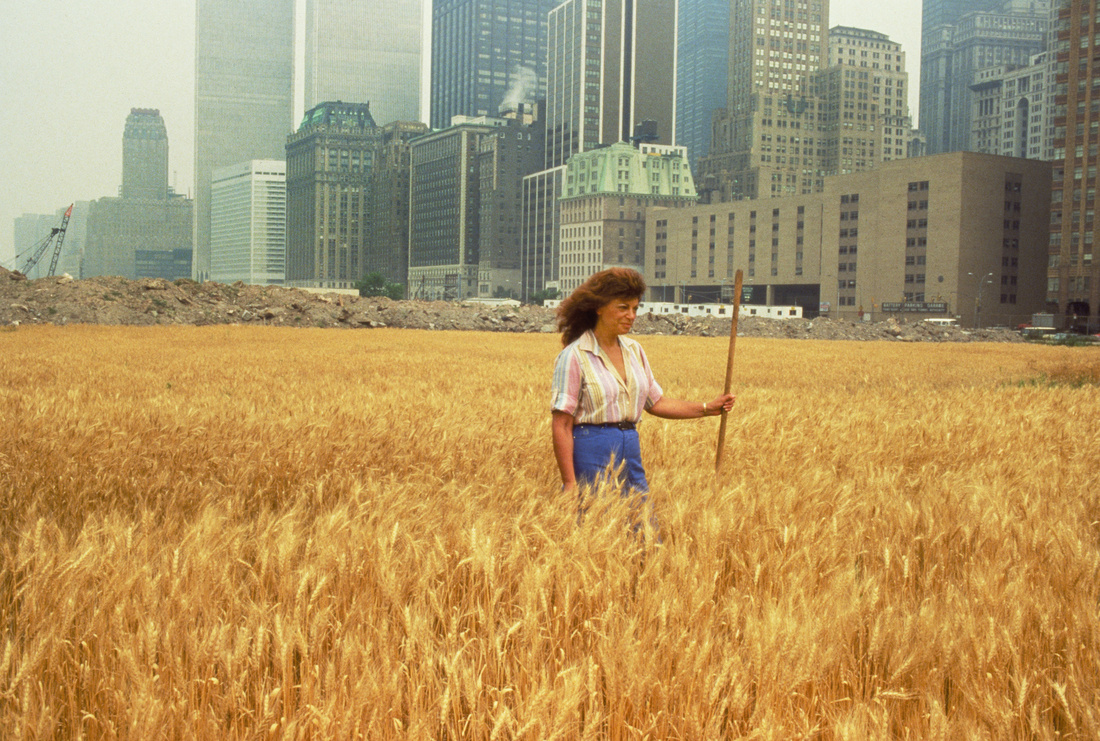 Agnes Denes, Wheatfield - A Confrontation: Battery Park Landfill, Downtown Manhattan, 1982. © Agnes Denes, Courtesy of Leslie Tonkonow Artworks + Projects, NY.