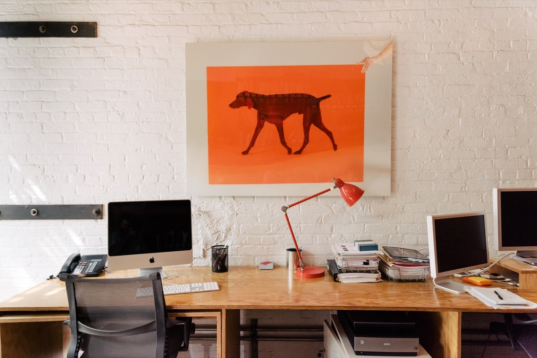 Detail of William Wegman's New York studio by Daniel Dorsa for Artsy.
