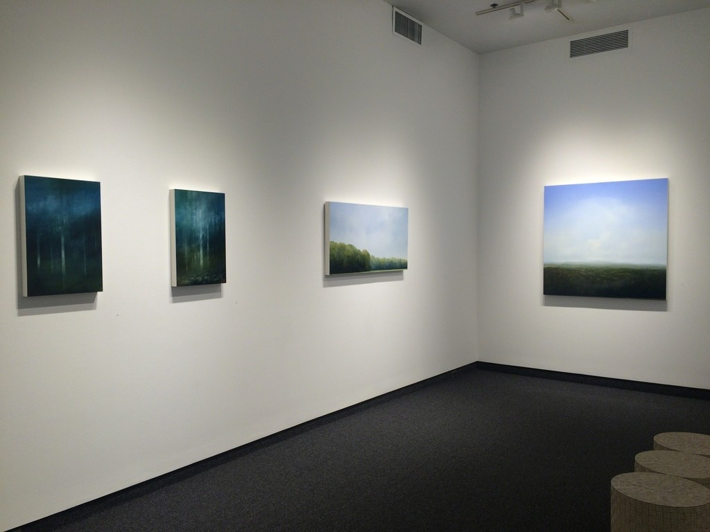"Installation view ""Darkness and Wonder,"" on view at Gallery Naga, Boston, 2015. Courtesy Gallery Naga."