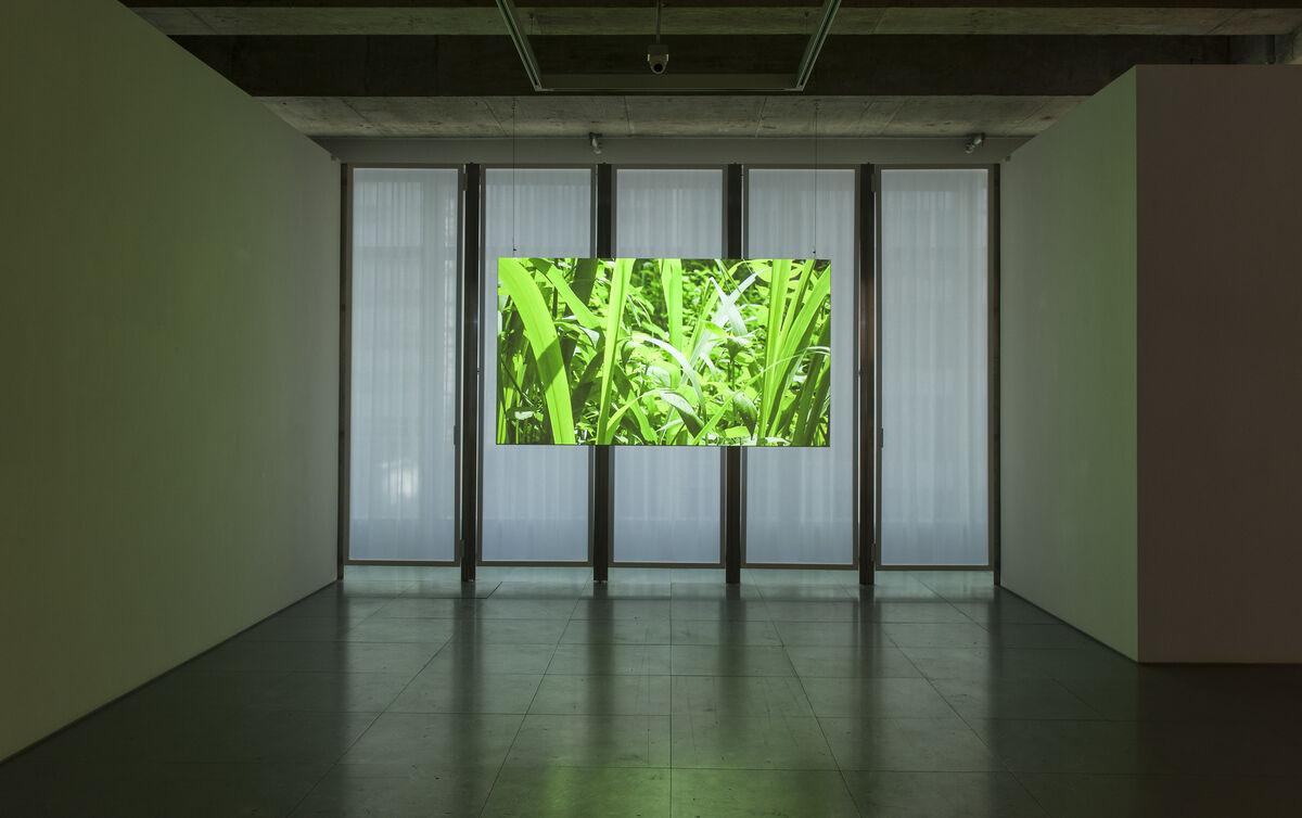 """Installation view of""""Tromarama: Panoramix"""" at Edouard Malingue Gallery, Hong Kong. Courtesy of Edouard Malingue Gallery and the artists."""