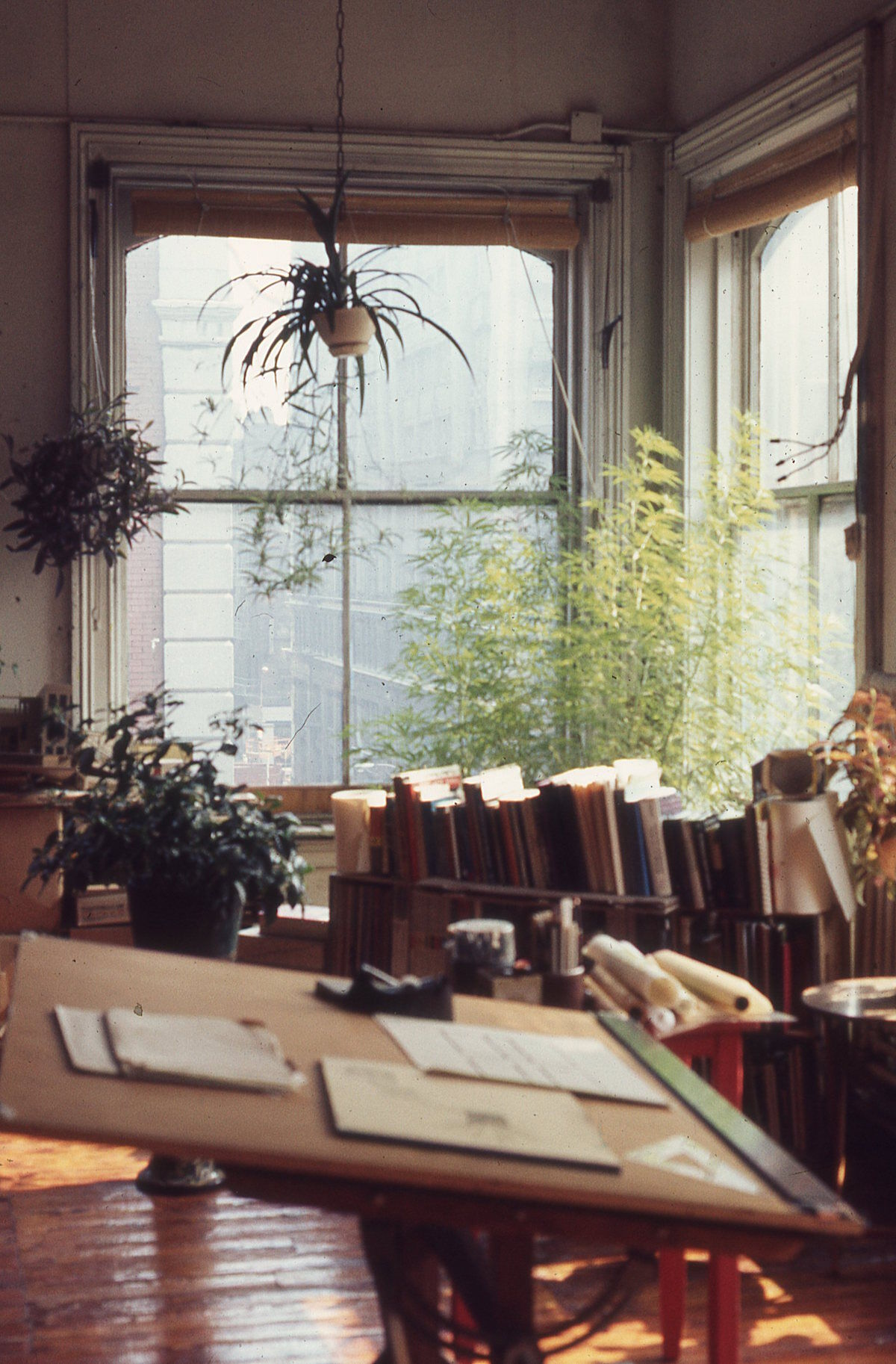 Interior view of a loft with a drawing table, indoor garden, and a window looking east down Broome Street, New York, circa 1971. Photo by Eric Cashdan.