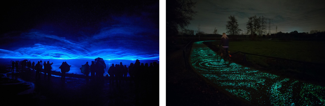 Photo ofVan Gogh Path, courtesy of Studio Roosegaarde.