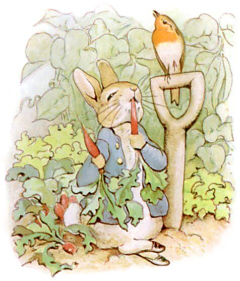"Beatrix Potter, Illustration from ""The Tale of Peter Rabbit"", 1901. Image via Wikimedia Commons."