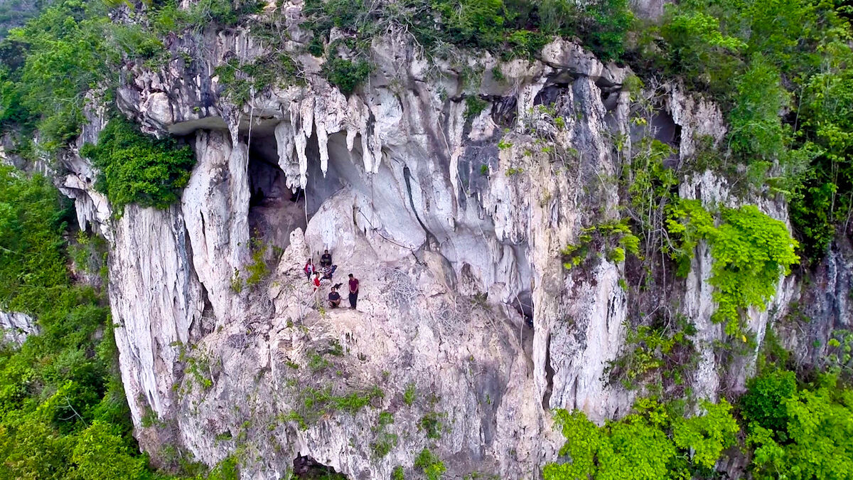 The exterior of a cave in East Kalimantan, Indonesia, holding what are believed to b the oldest cave paintings in the world. Photo © Pindi Setiawan.