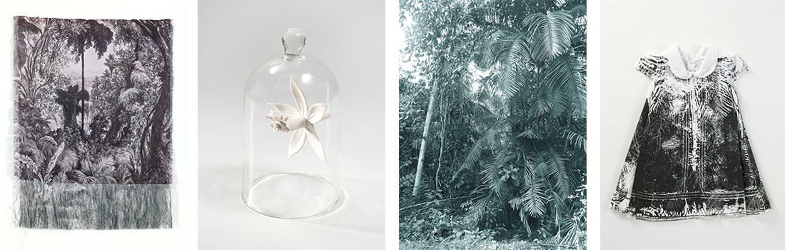 Anna Gonzalez,Devastacion II, Epidendrum, Selval II, and Desplazamientol,2015. Images courtesy the artist.