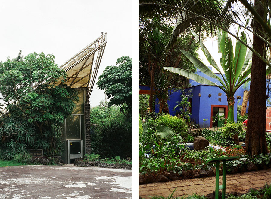 Views of the UNAM Botanical Garden and Frida House by Pia Riverola.