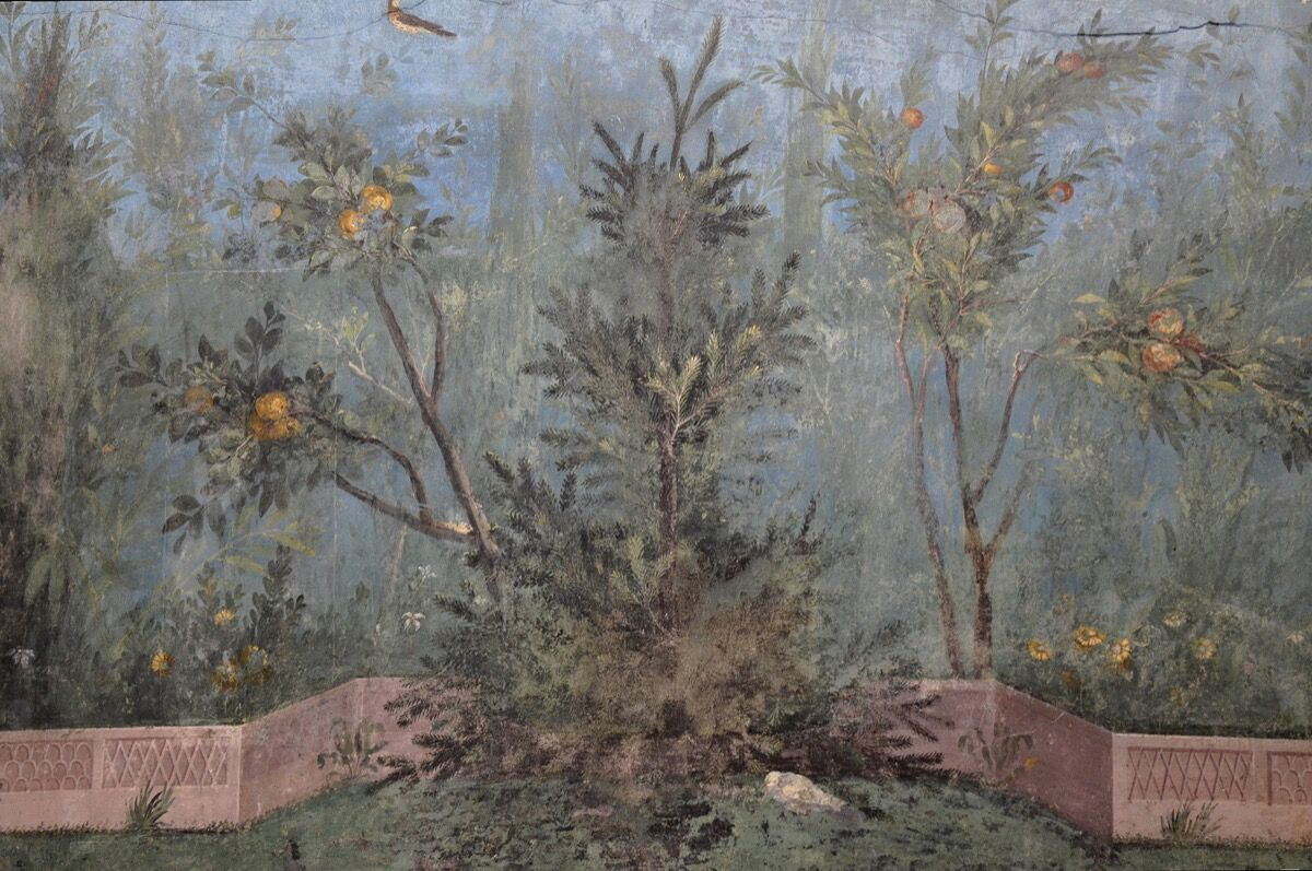 Detail with pine tree and pomegranate in the garden fresco from the Villa of Livia at Prima Porta in Rome at the Palazzo Massimo alle Terme, Rome, 30–20 B.C.E. Photo by Carole Raddato, via Flickr.