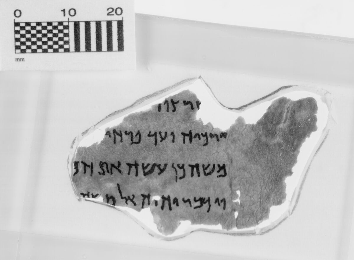 A Dead Sea Scroll fragment at the Museum of the Bible. Courtesy the Museum of the Bible.