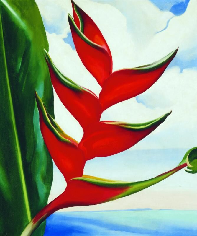 Georgia O'Keeffe, Crab Claw, 1939. Honolulu Museum of Art.