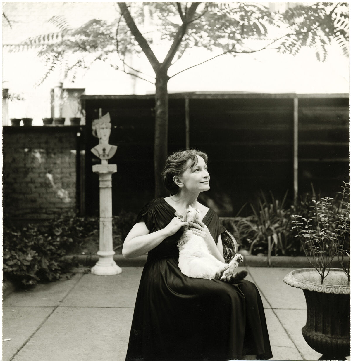 Hedda Sterne with Poussin. Image from Artful Cats  by Mary Savig, published by the Smithsonian's Archives of American Art, 2019. Courtesy of the publishers.
