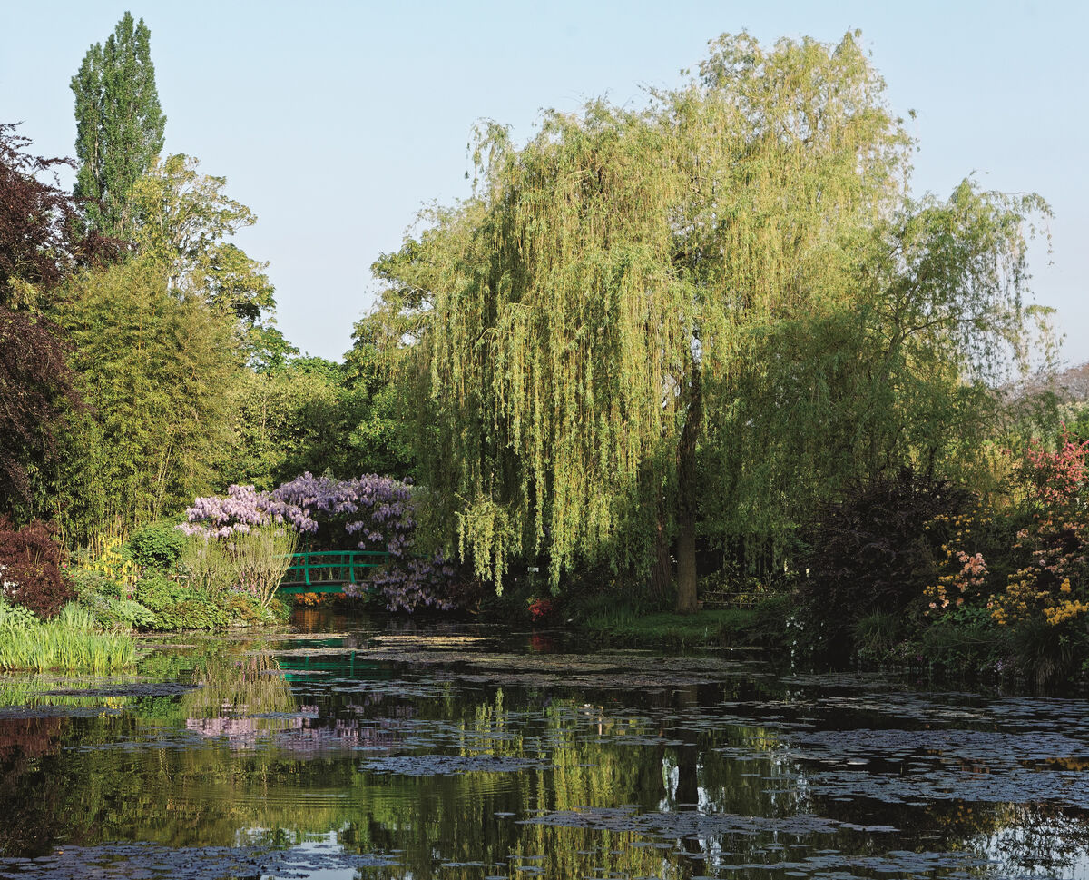 Claude Monet's garden in Giverny. Image © Francis Hammond, from A Day with Claude Monet in Giverny, by Adrien Goetz. Courtesy of Flammarion, 2017.