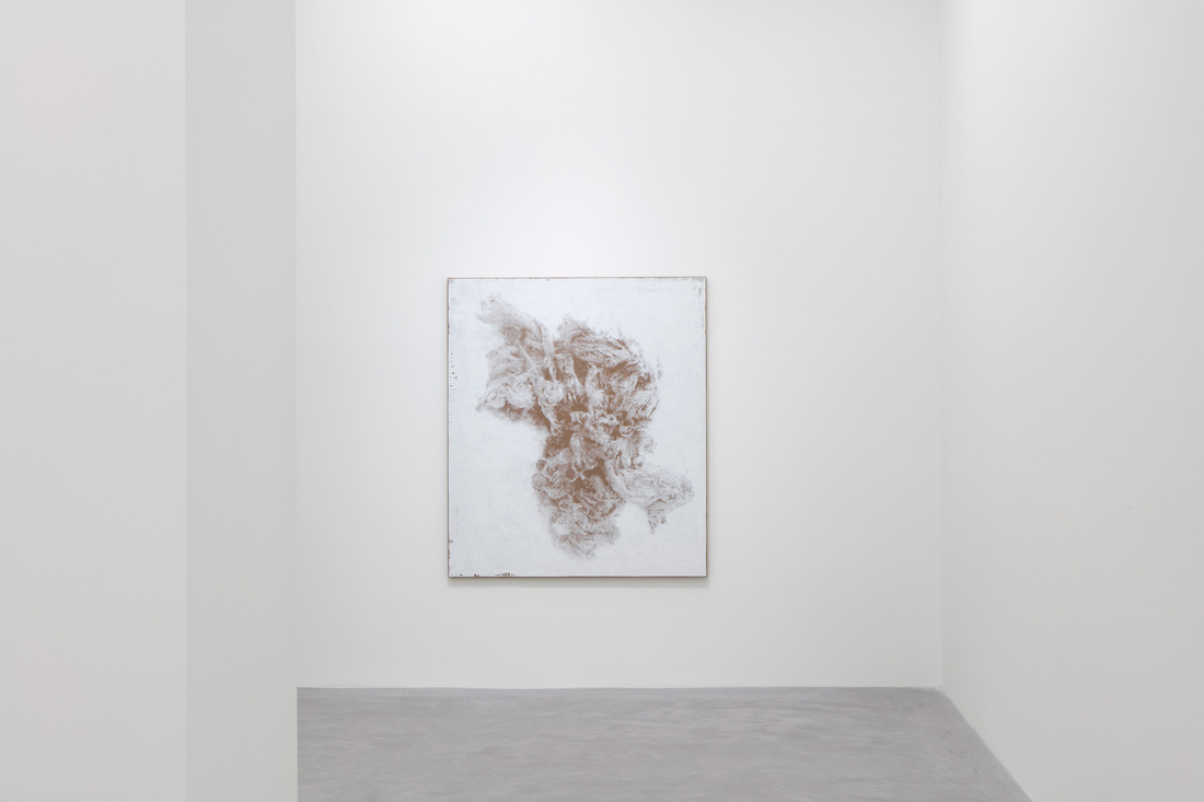 Installation view of N. Dash at Casey Kaplan, New York, 2016.Photo by Jean Vong, courtesy of the artist and Casey Kaplan, New York.
