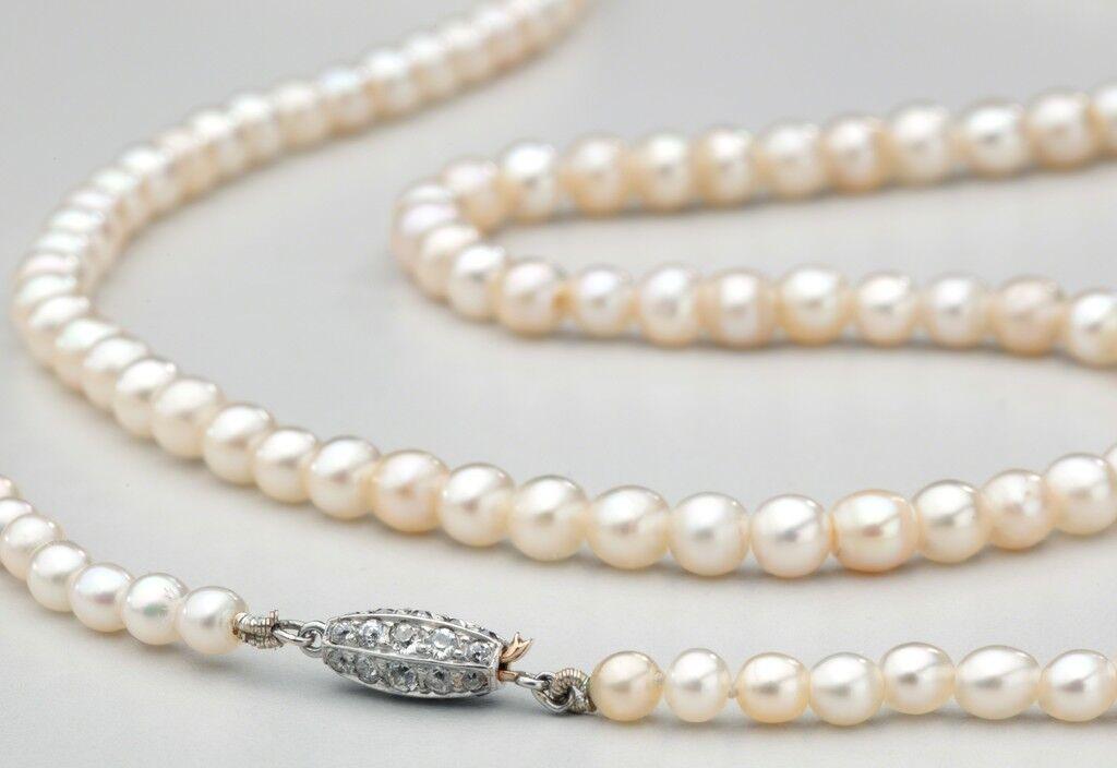 The Osborn Pearls