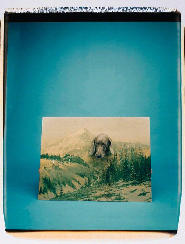 Landscape Portrait