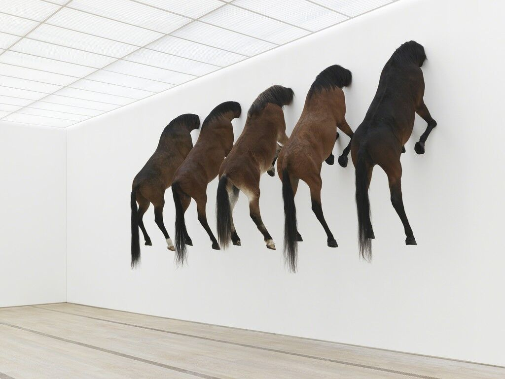 If This Isnt Contemporary Art What Is >> If You Don T Understand Conceptual Art It S Not Your Fault Artsy