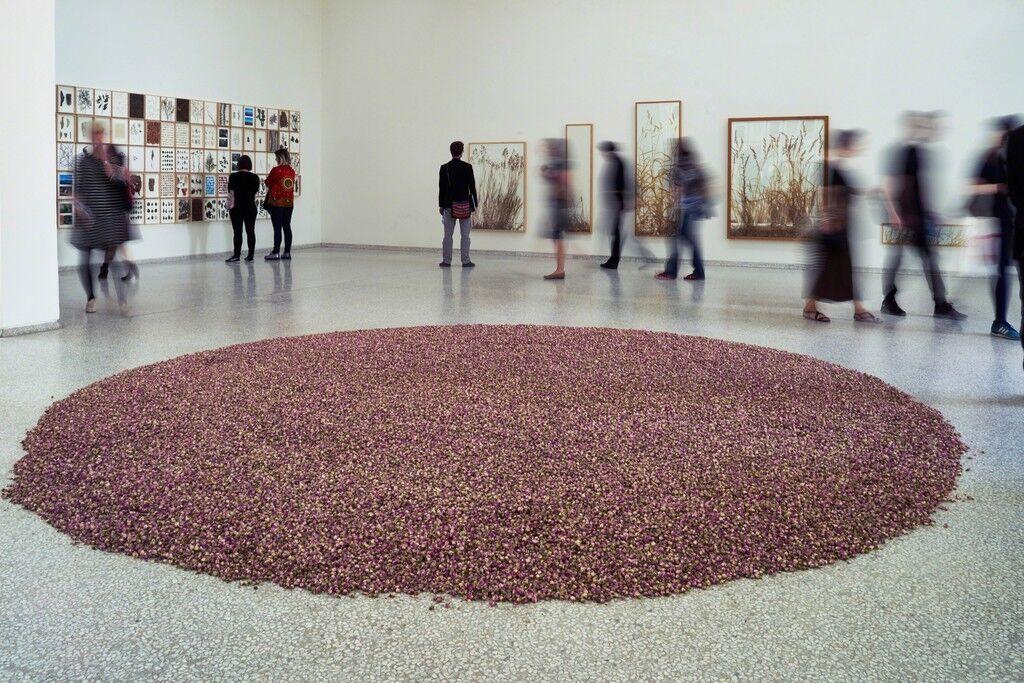 108 pound rosa damascena (Installation view)