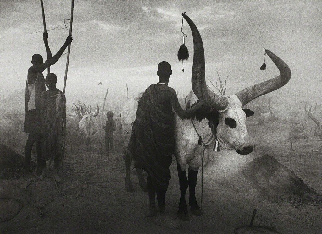 Dinka group at Pagarau, Southern Sudan, from the series Genesis