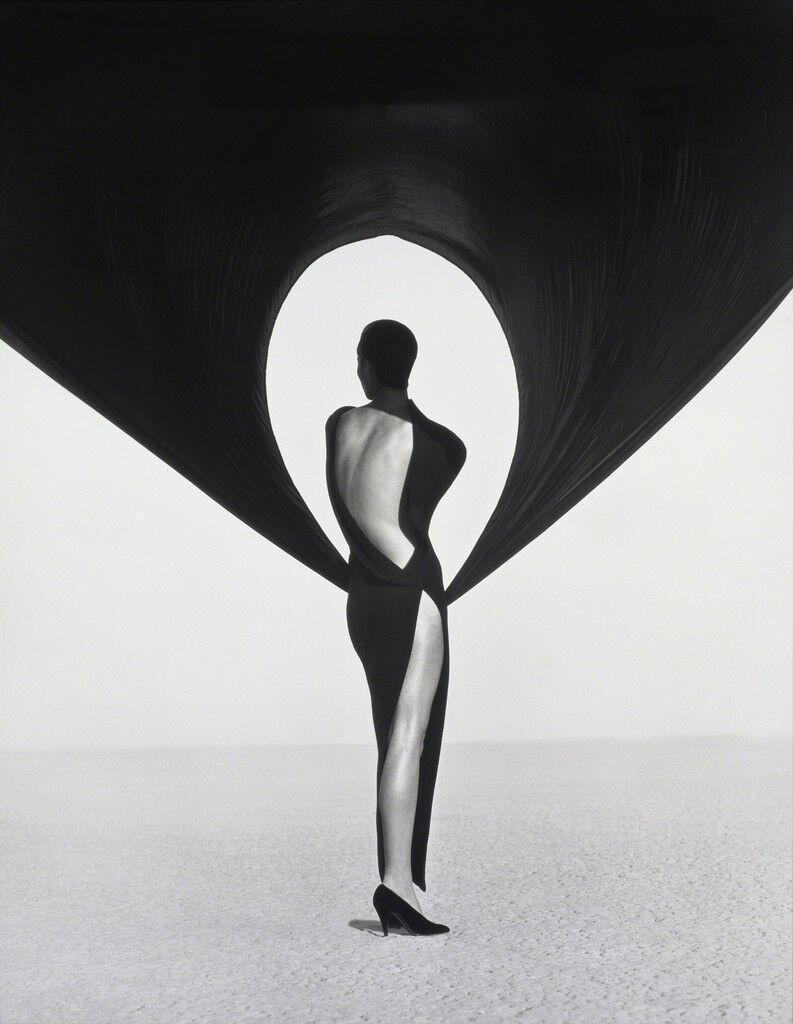 Versace Dress, Back View, El Mirage