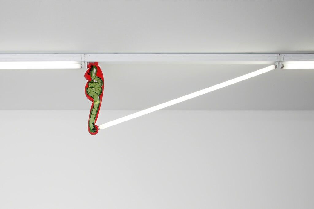 Fluorescent Fittings [Worm/Red]
