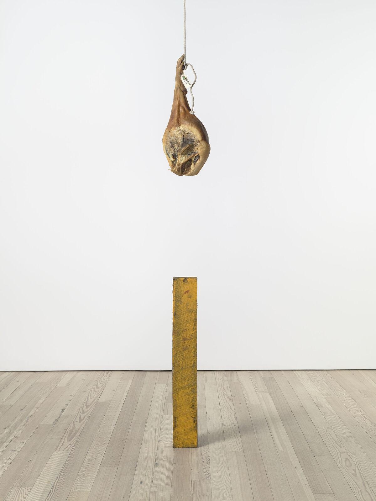 Virginia Overton, Untitled (KO's Ham), 2016, at The Whitney Museum of American Art, New York. Courtesy of the artist and Bortolami, New York.