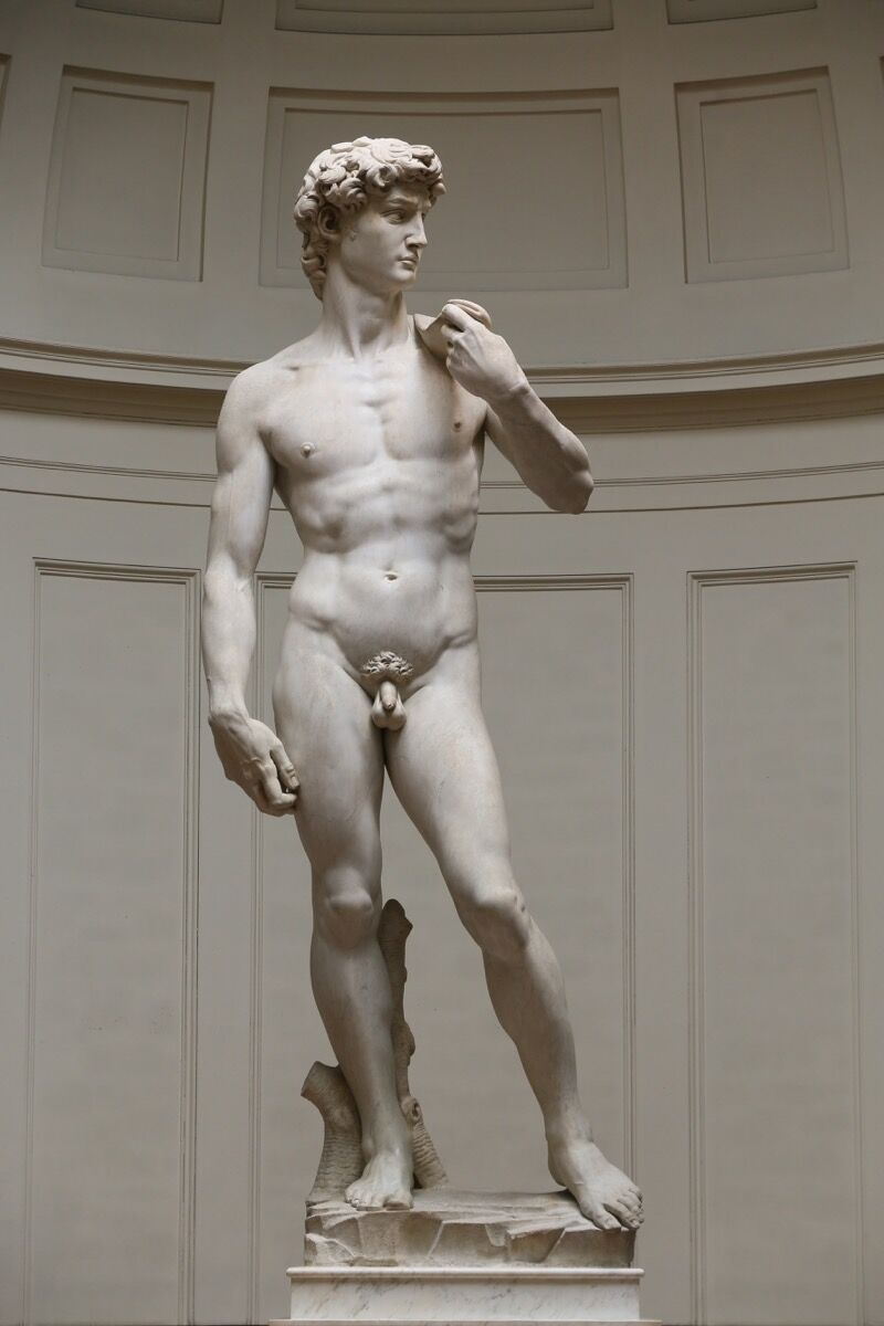 Michelangelo Buonarroti, David, 1501–04. Galleria dell'Accademia, Florence. Photo via Wikimedia Commons.