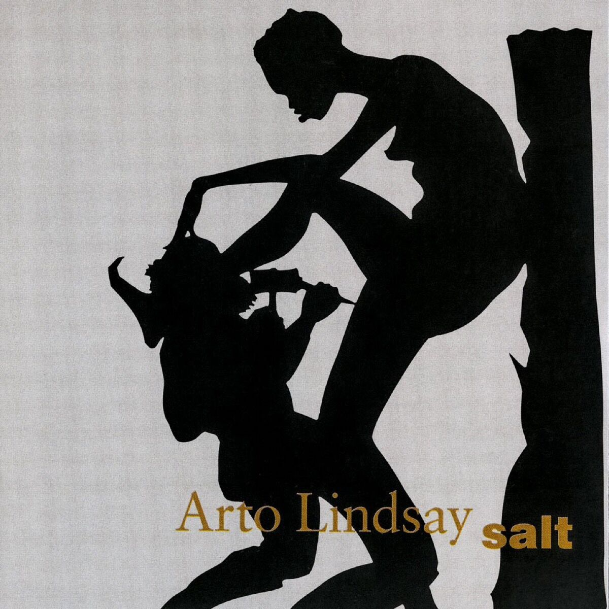 Kara Walker's cover for Salt by Arto Lindsay, 2004. Courtesy of TASCHEN.