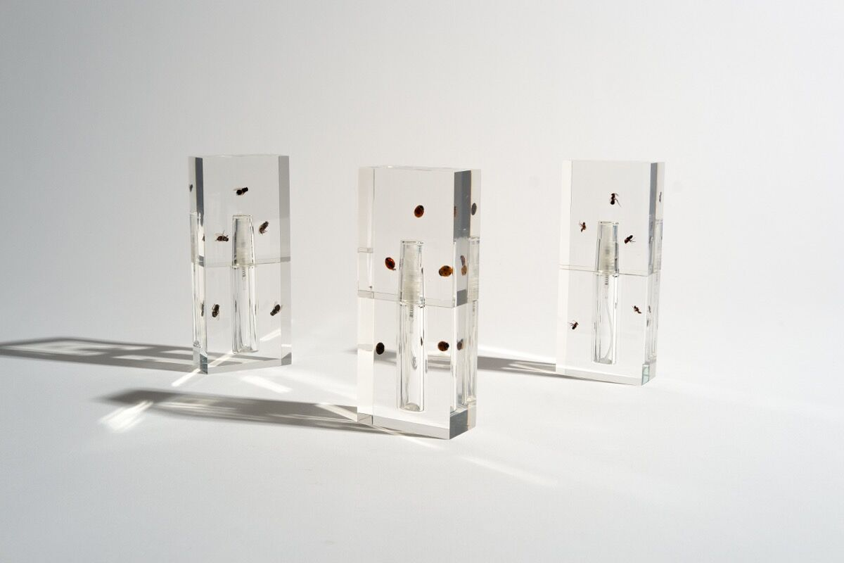 """Anicka Yi's line of custom fragrances titled """"Biography."""" Courtesy of the artist."""