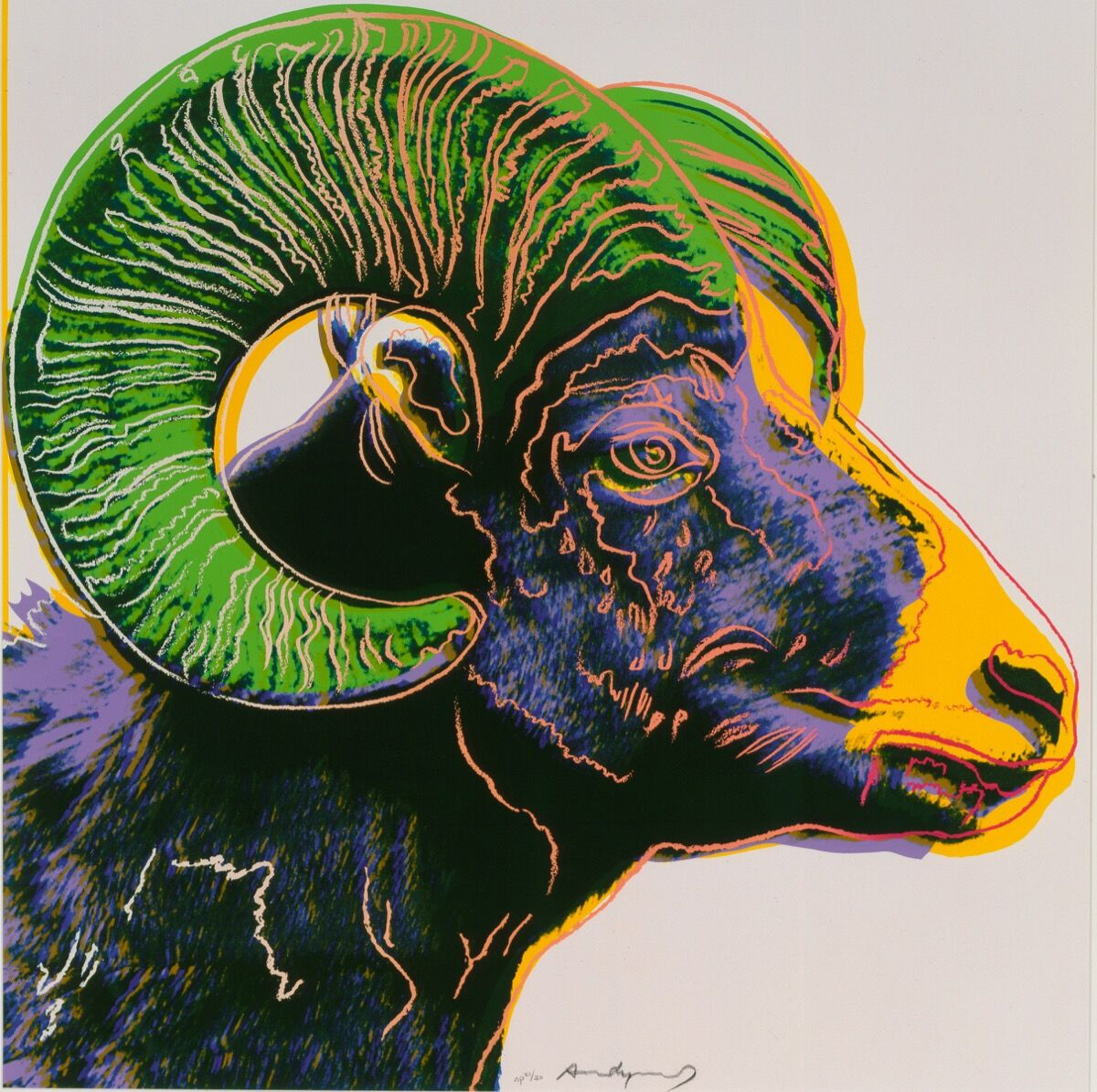 Andy Warhol, Endangered Species: Bighorn Ram, 1983. Artwork © 2019 The Andy Warhol Foundation for the Visual Arts, Inc. / Licensed by Artists Rights Society (ARS), New York. Courtesy of the Booth Museum.