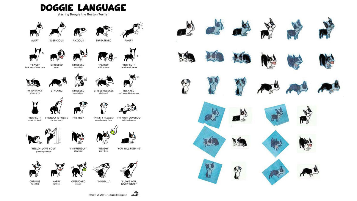 "Left: Lili Chin's original ""Doggie Language"" illustrations; Right: Side-by-side comparisons of Chin's original illustrations (in white) and the illustrations featured on various Kohl's products (in blue), as cited in the complaint."