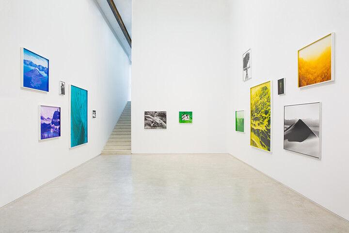 David Benjamin Sherry installation view, Salon 94