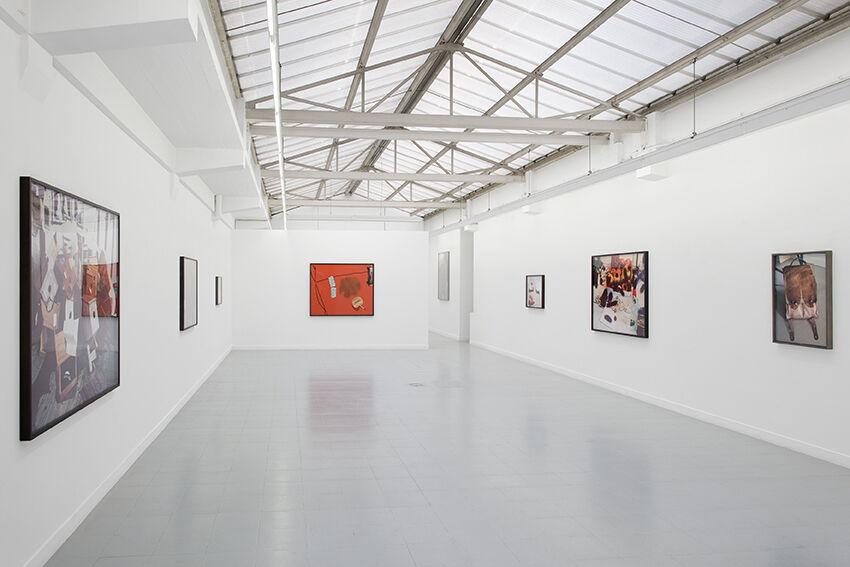 "Installation view ofLucas Blalock, ""A Farmer's Knowledge,""courtesy ofGalerie Rodolphe Janssen"
