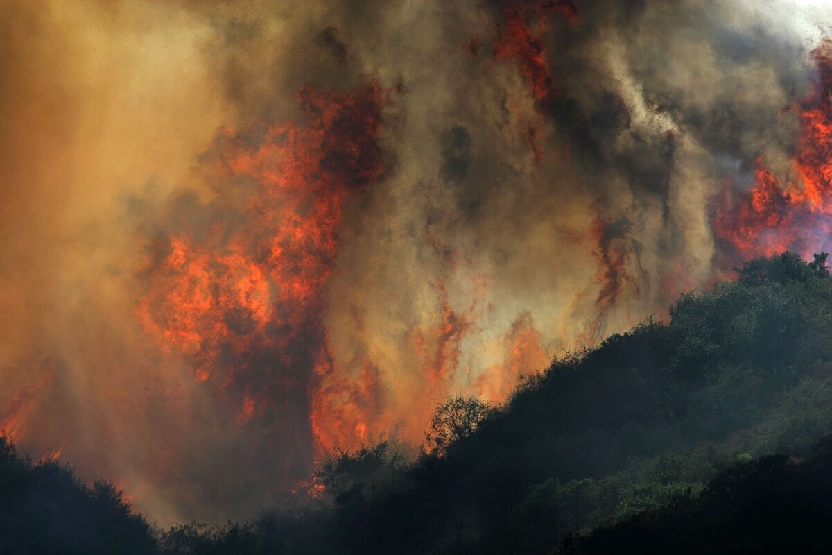 The Gap Fire, Goleta, CA, July 2008. Photo by David McNew/Getty Images.