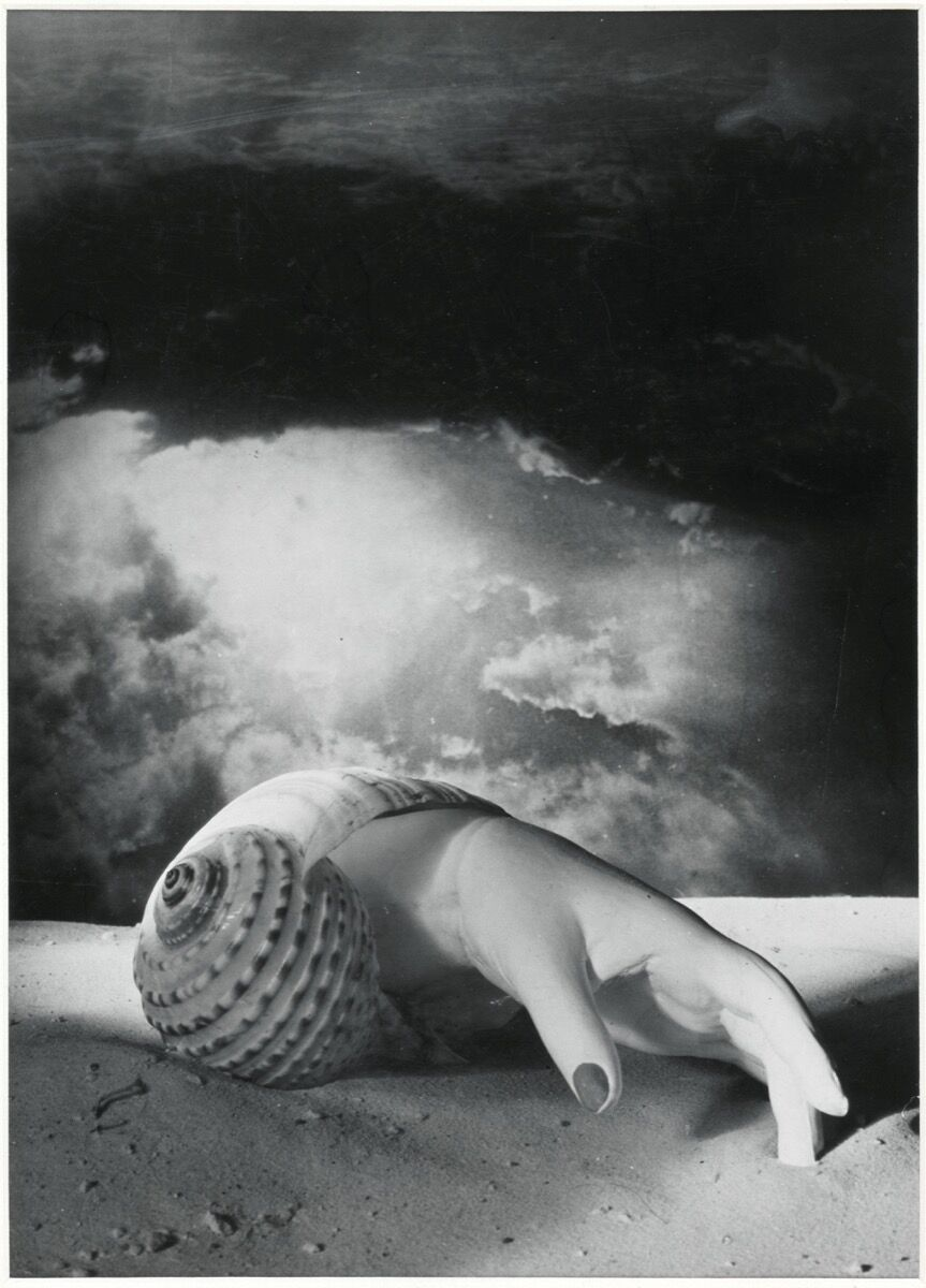 Dora Maar, Untitled (Hand-Shell), 1934. Photo © Centre Pompidou, MNAM-CCI, Dist. RMN-Grand Palais / image Centre Pompidou, MNAM-CCI. © ADAGP, Paris and DACS, London 2019. Courtesy of the Tate Modern.